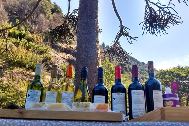 Pick-nick lunch with nice Chilean wines during Cycling Tour in Chile´s Lake District