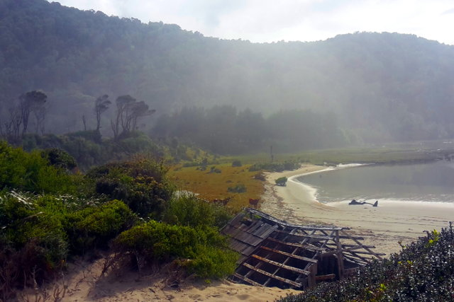 Beach during Hiking Tour in Mapu Lahual in Chile