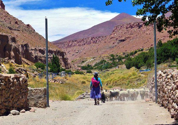 Andean Culture in San Pedro de Atacama