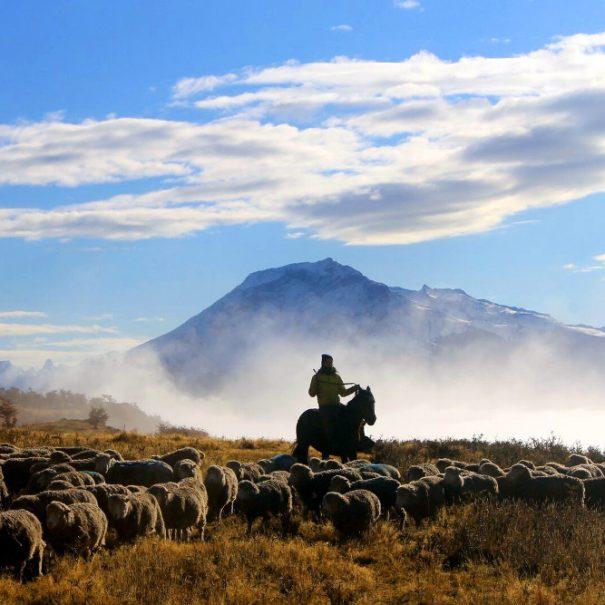 Patagonia Estancia Travel