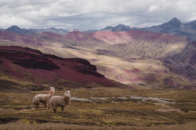 Peru-Ausangate-Hike