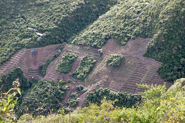 Peru-Choquequirao-Trek-Aerial-View-Ruins