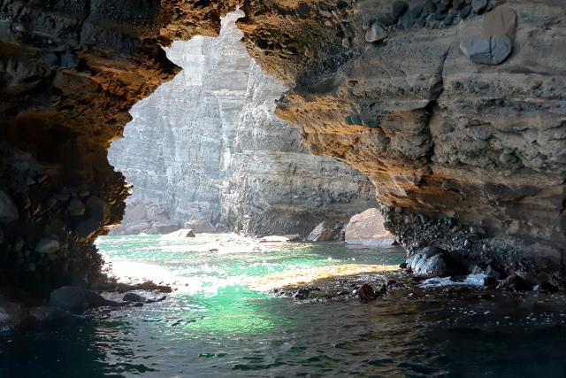 Mexico-Baja-California-Adventure-Tour-Espiritu-Santo-Island