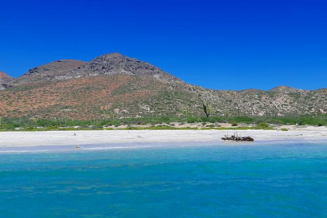 Mexico-Baja-California-Adventure-Tour-Isla-Espiritu-Santo-Beach