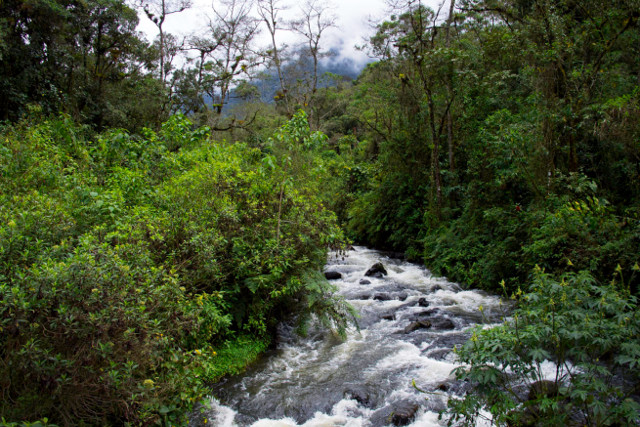 Colombia-Los-Nevados-Trek-Otun-Lake-River