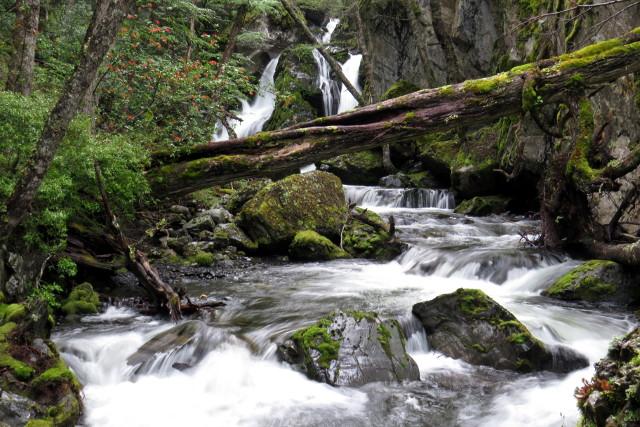 Torres-del-Paine-Pingo-Trail