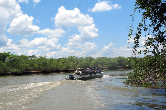 Brazil-Pantanal-Wildlife-Safari-Boat-Tour