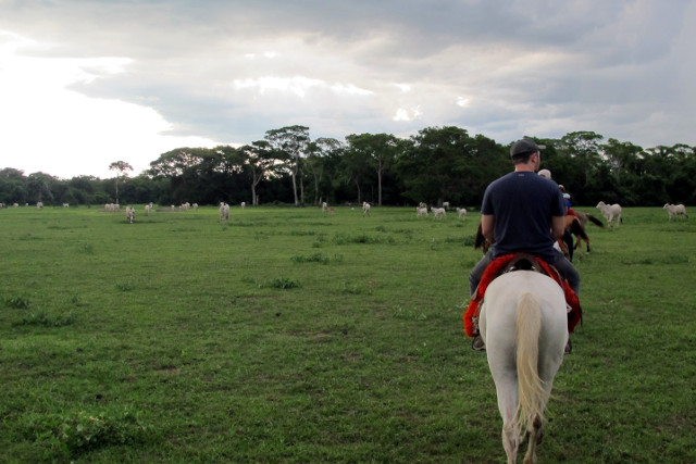 Brazil-Pantanal-Wildlife-Safari-Horseback-Riding