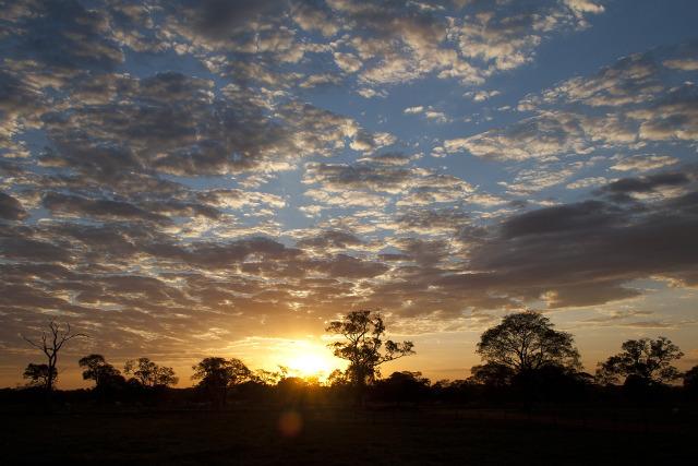 Brazil-Pantanal-Wildlife-Safari-Sunset