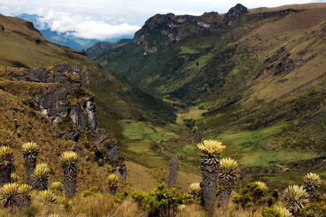 Colombia-Volcano-Trek-Los-Nevados-NP