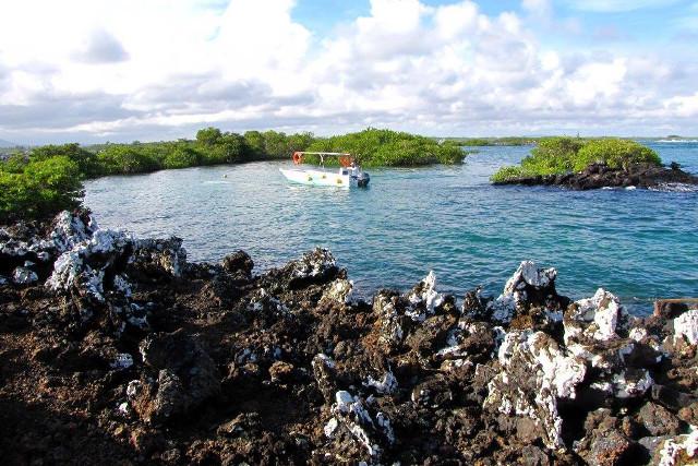 Ecuador-Galapagos-Island-Hopping-Tintoreas